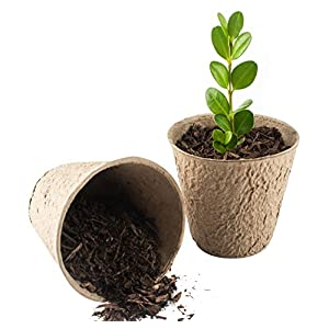 "3À� Peat Pots Pack of 50 À"" Perfect Seedling & Herb Seed Starter Pots – 30 Free Plant Markers -greenfingers…"