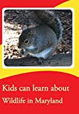 Kids can learn about Wildlife in Maryland