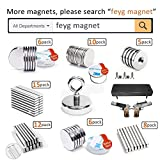 Refrigerator Magnet Clips, 15 PCS Powerful Magnetic