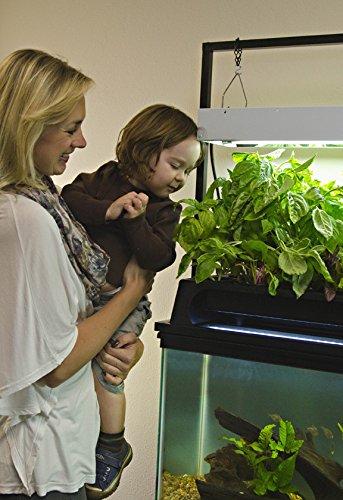 Ecolife Conservation Eco Cycle Aquaponics Indoor Garden