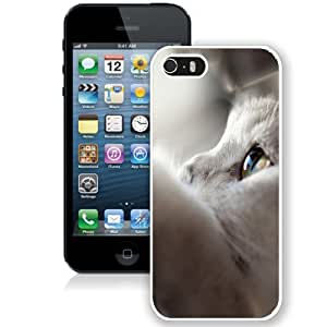 Fashionable Custom Designed iPhone 5S Phone Case With White Cat Looking Up_White Phone Case