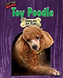 Toy Poodle: Oodles of Fun (Little Dogs Rock!)