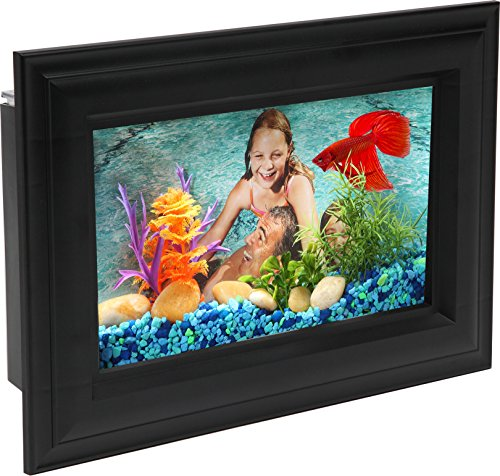 (AquaScene .75-Gallon Fish Tank with LED Lighting)