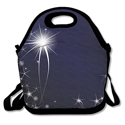 unique-lunch-bag-lunch-boxes-waterproof-outdoor-travel-picnic-lunch-box-bag-tote-with-zipper-and-adj