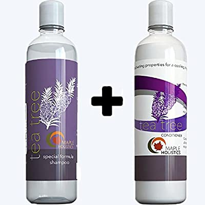 Hair Loss Treatment for Women Regrowth + Peppermint Oil - Best Anti Dandruff Shampoo and Conditioner for Men - Head Lice Prevention Shampoo - Argan Oil Hair Growth Therapy Shampoo and Conditioner Set