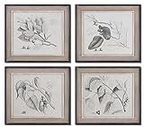 Multi Sepia Leaf Study Set Of 4 Wall Art