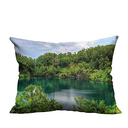 RuppertTextile Simple Pillowcase Pulau Ubin Singapore Lagoon Tropical Climate Rainforest Freshness Growth Lush CushionW13 x L13