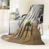 AmaPark Luminous Microfiber Throw Blanket interior of dining room with shelves d rendering Glow In The Dark Constellation Blanket, Soft And Durable Polyester(60''x 50'')