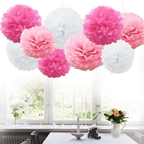 iShyan 18pcs Tissue Hanging Paper Pom-poms, Flower Ball Wedding Party Outdoor Decoration Premium Tissue Paper Pom Pom Flowers Craft Kit(Pink & White)