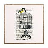 Deny Designs Coco De Paris,  Bird On Birdcage, Framed Wall Art, Large, 30'' x 30''