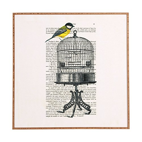 - Deny Designs Coco De Paris,  Bird On Birdcage, Framed Wall Art, Small, 12