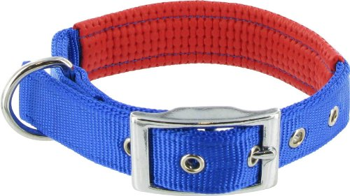 Kakadu Pet Orbit Padded Nylon Dog Collar, 3/4-Inch by 18-Inch, Blue with Red Trim, My Pet Supplies