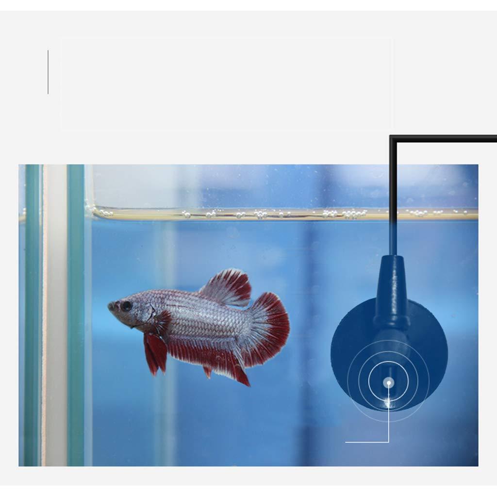 GBX Suministros para acuarios domésticos-Calentador de pecera ...
