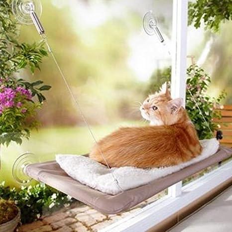 Hamaca Cuna Alfombra Gatos para ventana pared con ventosas 50 x 25 cm 5 kg Max: Amazon.es: Bebé