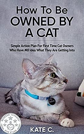 How To Be Owned By A Cat