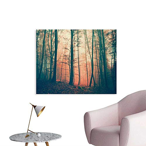 Tudouhoho Mystic Cool Poster Light and Vintage Color in Mysterious Autumn Forest Woodland Nature Picture Wallpaper Coral Dark Green W28 xL20 ()