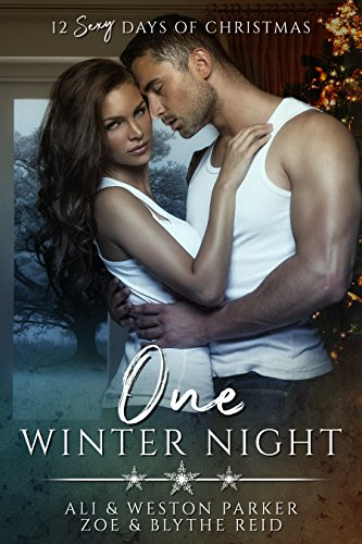 One Winter Night: A Sexy Bad Boy Holiday Novel (The Parker's 12 Days of Christmas) cover