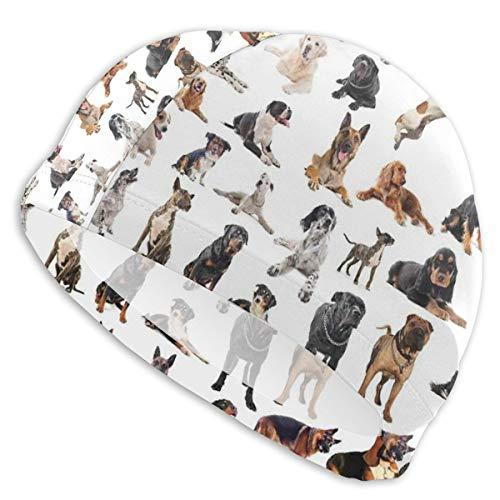 K0k2to Swimming Cap Elastic Swimming Hat Diving Caps,Picture with Purebred Dogs Australian Sheepdog Belgian Boxer Italian Mastiff Pedigree,for Men Women -