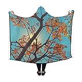 YIJIEVE Hooded Blanket Tree Autumn South Africa Johannesburg Foliage Park Blanket 60x50 inch Comfotable Hooded Throw Wrap