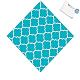 Bargain World Turquoise Quatrefoil Luncheon Napkins (With Sticky Notes)