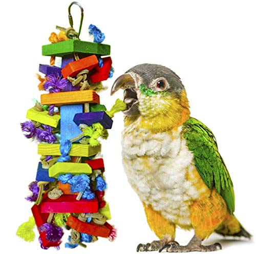 Block Toy for Bird - For Physical & Psychological Well-being of your Parrots - Nibbling Keeps Beaks Trimmed - Preening keeps Feathers Clean - Multicolored Wooden Blocks Attract Pet's Attention