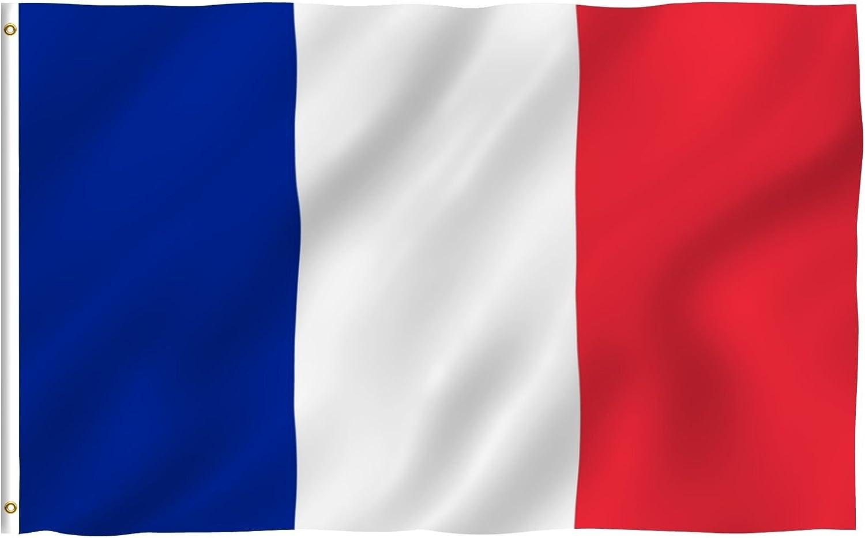 France  International  3x5 Polyester Flag