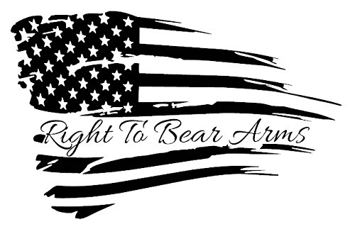 Right To Bear Arms Protect 2nd Second Amendment American Flag Decal Home Decor Sticker