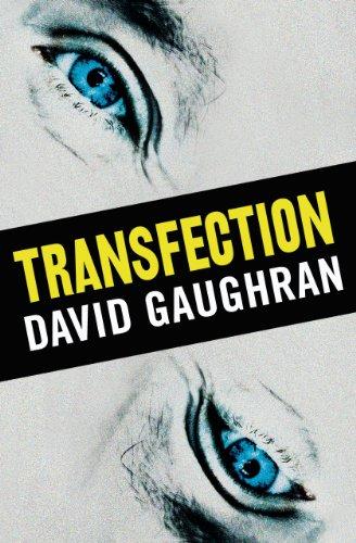 Transfection David Gaughran ebook product image