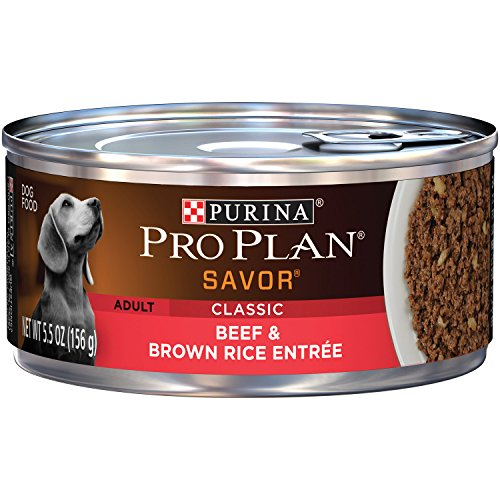 Purina Pro Plan Savor Wet Dog Food