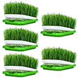 Petforu Seed Sprouter Tray, 5 Set Plant Germination Trays Double Layer Hydroponics Basket