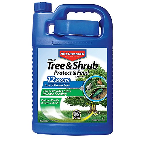 Bayer Advanced 701915 12 Month Tree and Shrub Protect and Feed Concentrate, 1-Gallon ()