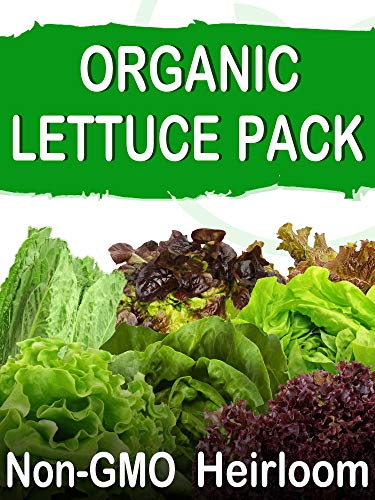 SavvyGrow Organic Heirloom Lettuce Seeds (10 Varieties) - Survival Garden Seeds for Planting - Open Pollinated, 85% Plus Germination Rate, Non-GMO & Source in USA Vegetable Seed (Organic)
