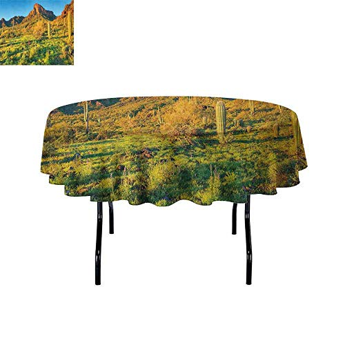Saguaro Waterproof Anti-Wrinkle no Pollution Picacho Peak at Sunrise Surrounded by Barren Area Hostile Living Contidions Theme Table Cloth D35 Inch Green Blue]()