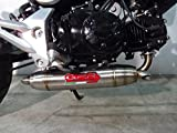 gpr exhaust system - Honda MSX Grom 125 GPR Exhaust Systems Full Race System With Reverse Underengine Deeptone Muffler