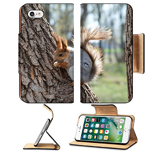 liili-premium-apple-iphone-7-iphone7-flip-pu-leather-wallet-case-red-squirrel-eating-a-nut-on-a-tree