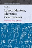 img - for Labour Markets, Identities, Controversies (Studies in Critical Social Sciences) book / textbook / text book
