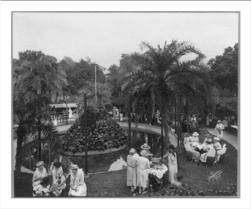 (Historic Print (L): Jewel Box Tea Garden, Tampa, Florida)