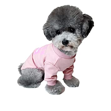 QJKai Ropa para Perros Ropa para Mascotas de Moda Ropa para Perros pequeños Ropa de Dos