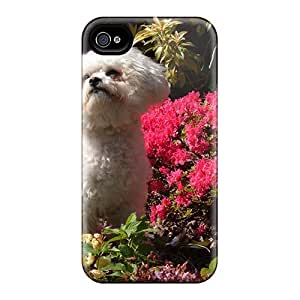 For Iphone 4/4s Tpu Phone Case Cover(angel The Bichon)