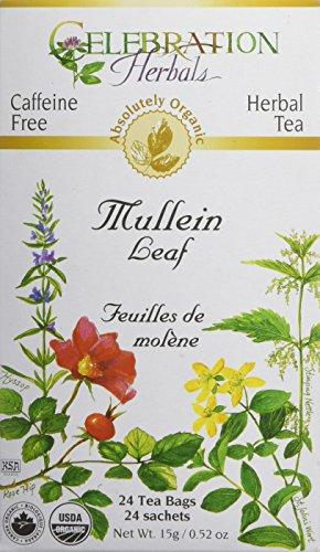CELEBRATION HERBALS Mullein Leaf Organic 24 Bag, 0.02 Pound