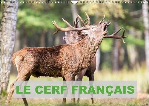 Télécharger Le Cerf Francais 2018: Photos De Cerfs En France gratuit de livres en PDF