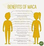 1-Maca-Powder-Organic-Gelatinized-from-Raw-for-Enhanced-Absorption-Vegan-Non-GMO-1lb-FREE-Recipe-Book