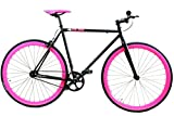 Golden Cycles Fixed Gear Single Speed Fixie Road Bike (Sugar Coat, 52)