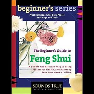 The Beginner's Guide to Feng Shui Speech