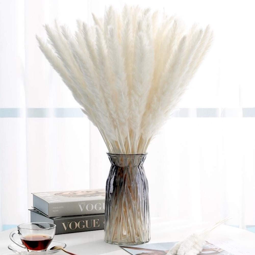 Luxury Box Protected Pampas Grass Decor - 35 Pieces 17