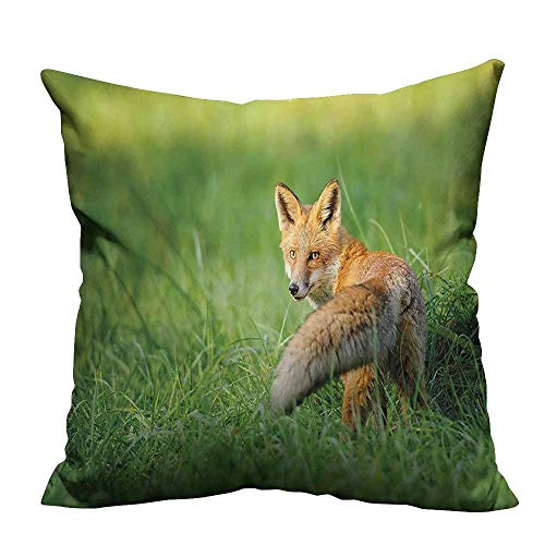 YouXianHome Print Bed Pillowcases Red Fox Fluffy Tail beh d Grass Digital Image Fern Green and ger Washable and Hypoallergenic(Double-Sided Printing) 20x20 inch]()