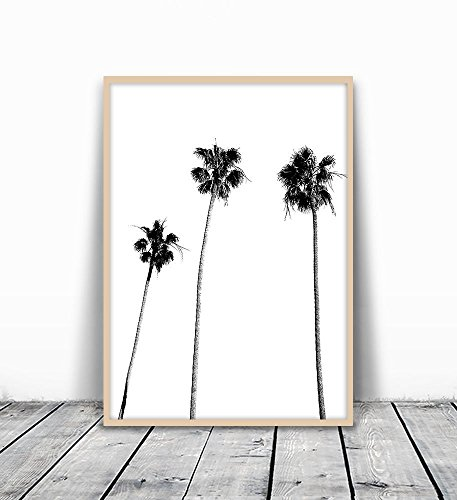Palm-Tree-Print-Palm-Print-Palm-Tree-Photography-Black-and-White-Palm-Palm-Tree-Tropical-Wall-Art-Tropical-Decor-Wall-Decor-Black-and-White-Palm-Tree-Black-Palm-Tree-Minimalist-8x10