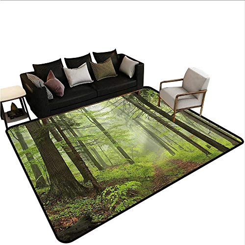 - Outdoor,Large Floor Mats for Living Room 80