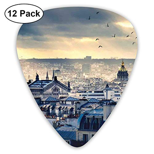 Celluloid Guitar Picks - 12 Pack,Abstract Art Colorful Designs,Paris Cityscape From Montmartre Rooftops Flying Bird Pigeons Foggy Sunrise,For Bass Electric & Acoustic ()