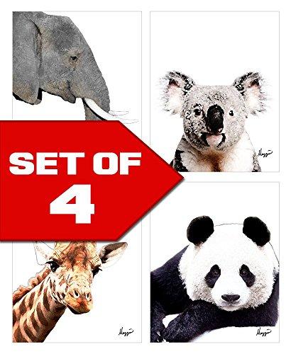 Wallables Wall Decor (Elephant, Panda, Koala, Giraffe - Animals Theme Bundle! Four Stylish 8x10 Wall Decor Prints in a Set. Perfect for Baby's Room, Kids Room & Nursery Decoration!)